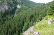 Mass Grave Found Near Koricanske Stijene, Bosnia