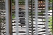 Mandić i ostali: Ishitrena izjava optuženog zbog provokacija