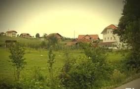 Milunić i ostali: Svjedok nije vidio Duška Zorića