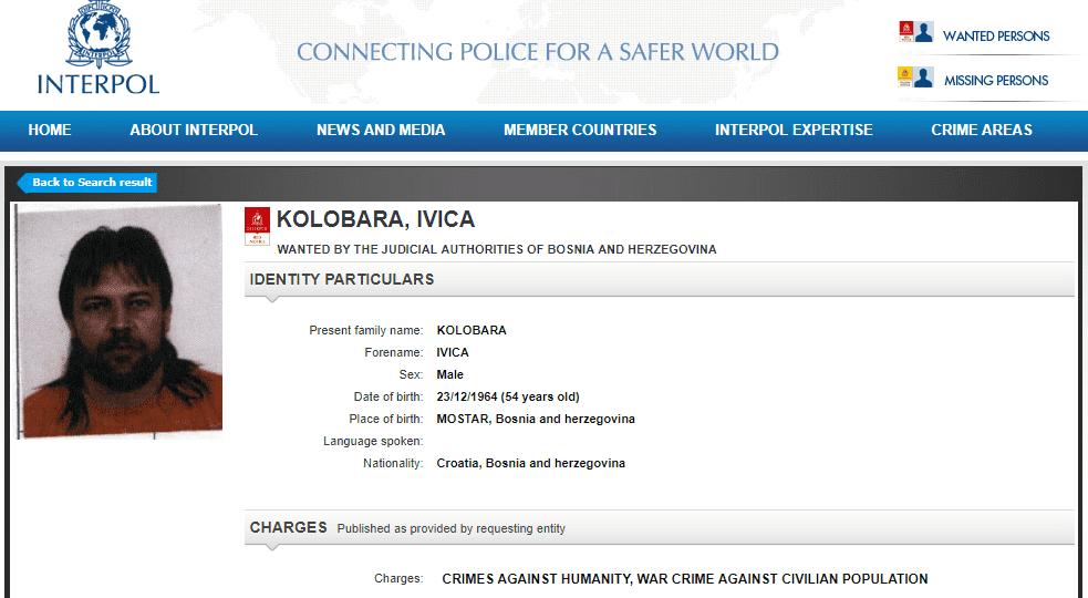 ivica-kolobara-2.png