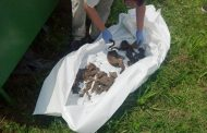Bosnia Finds Two War Victims in Hidden Grave