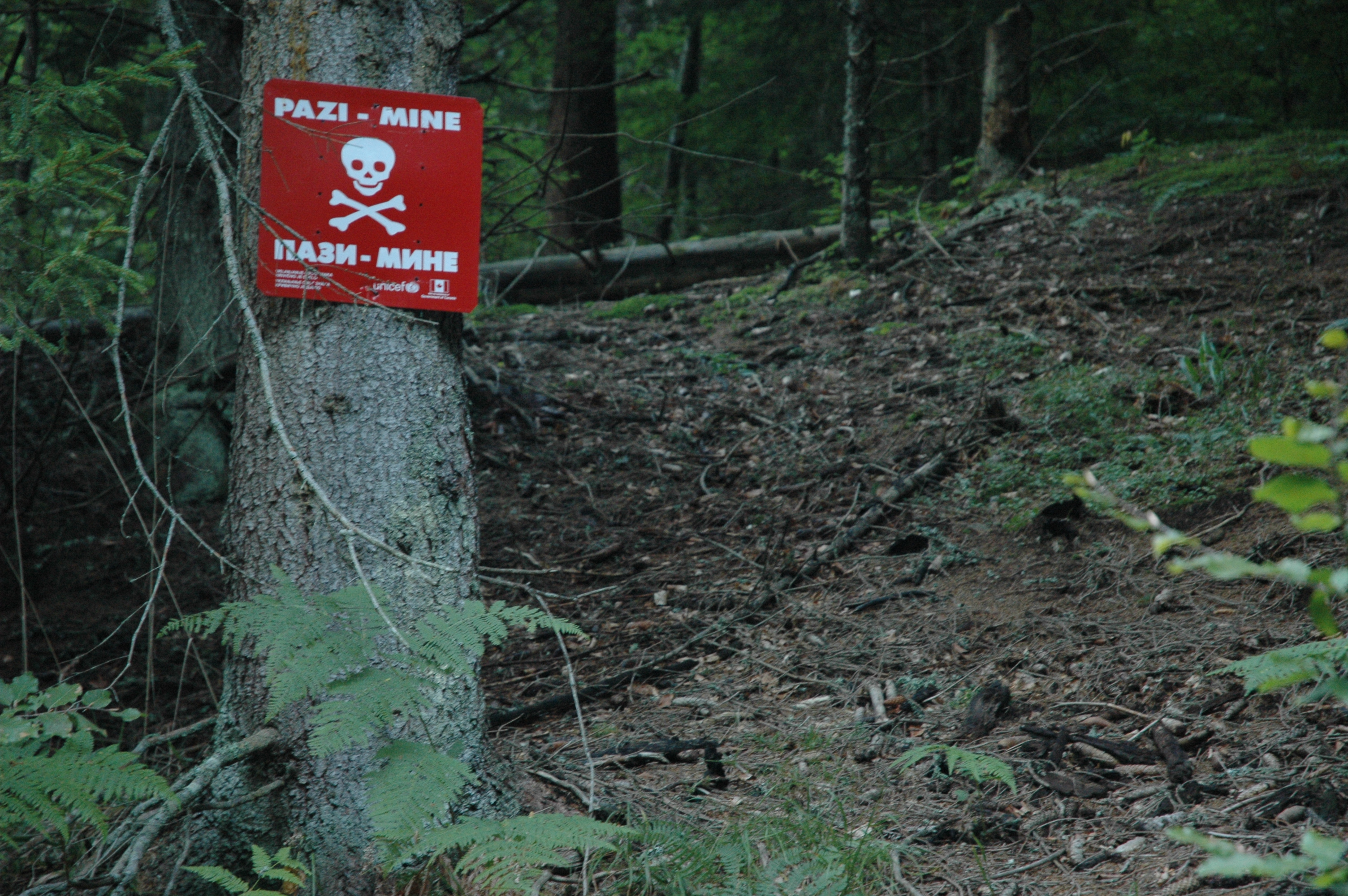 Wartime Landmines Still Taking Lives in Bosnia