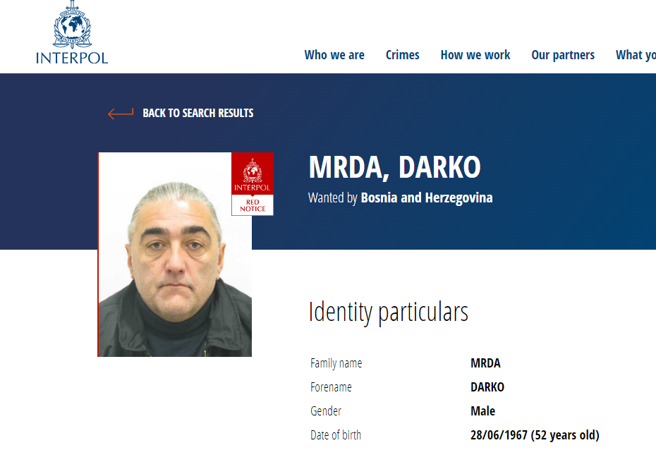 darko-mr--a.png