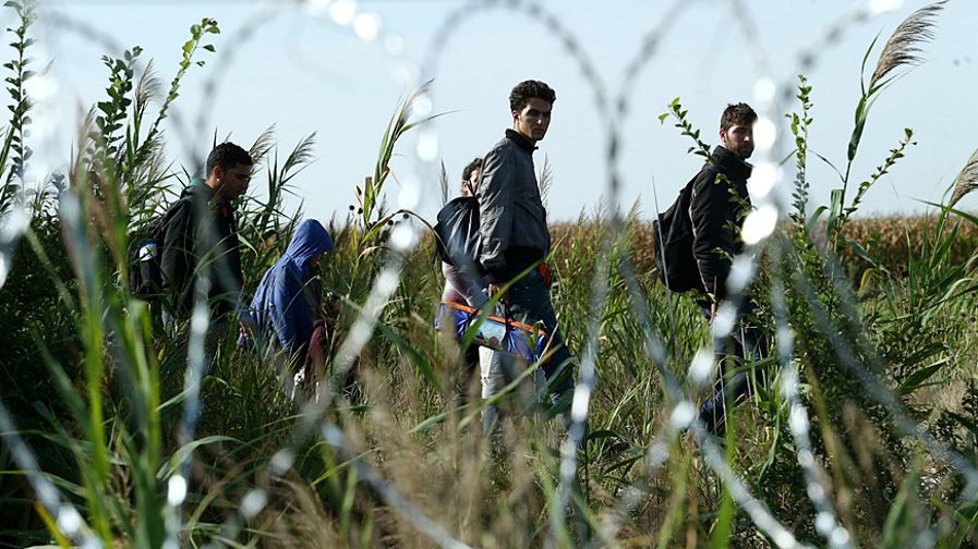 Migrants_in_Hungary_2015_Aug_015-e1591368804638.jpg