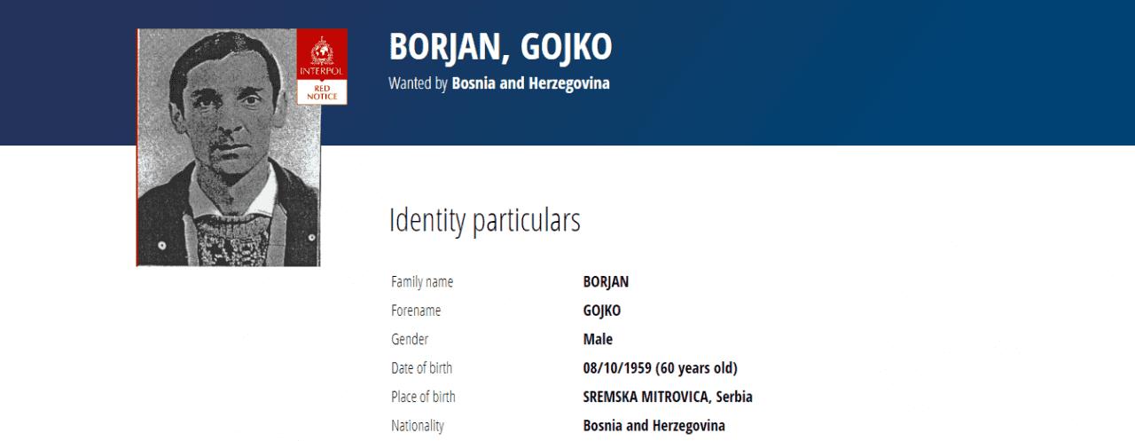 gojko-borjan-1280x497.png