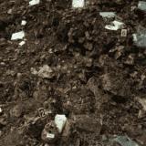 Eksumacija grobnice Kalinovik